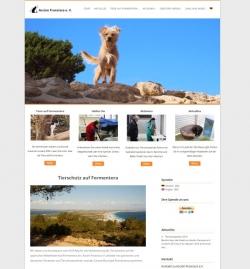 Accion Francisco Webdesign