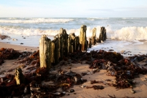 Strand - Fotografie