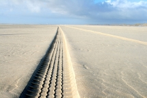 Spur im Sand - Naturfotografie